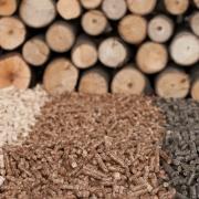 Energija biomase