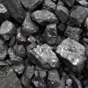 Premog