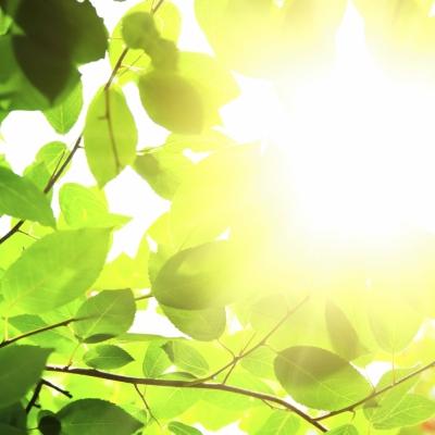 Energija sončne svetlobe se prenaša na našo kožo in nas greje