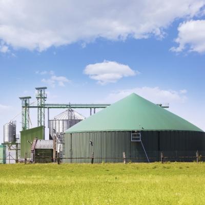 Kako deluje elektrarna na biomaso?