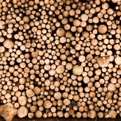 Pomen energije iz biomase
