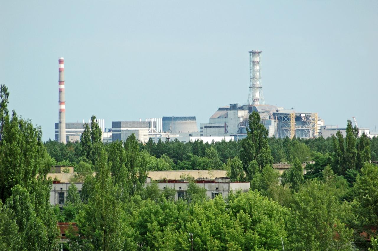 V okolici Černobila vse bogatejši živalski svet