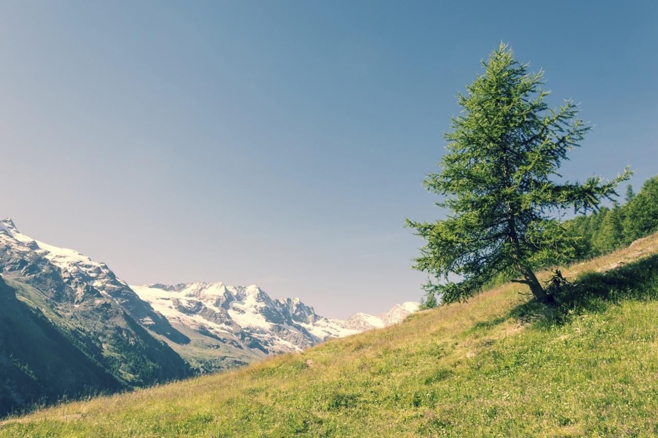 Evropski cilji za čistejšo in učinkovitejšo porabo energije