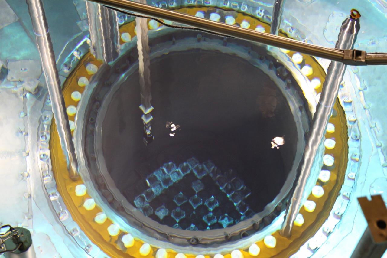 jedrske elektarne