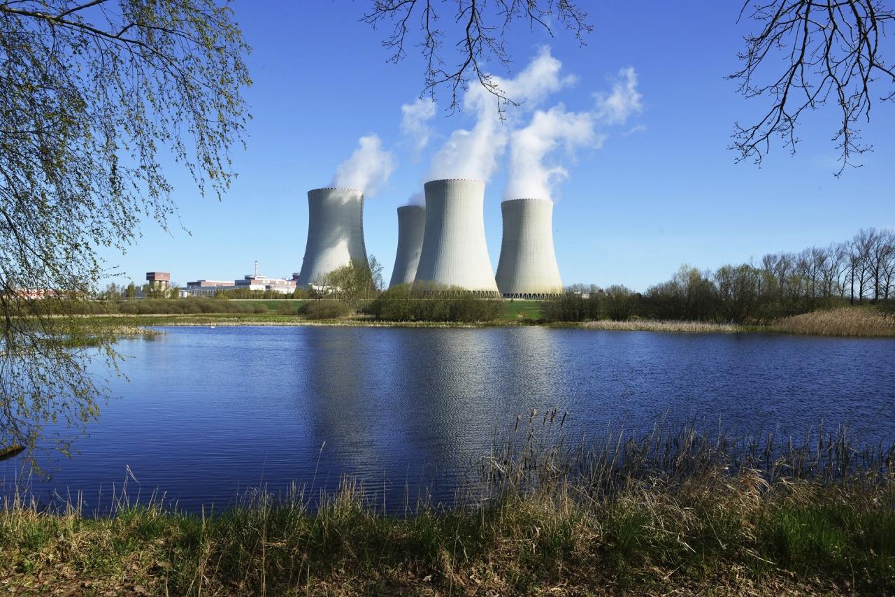 Ob jedrski elektrarni raznolik rastlinski in živalski svet
