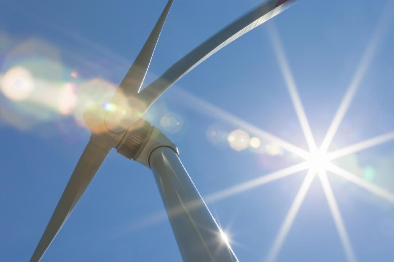 Palme navdihnile obliko velikanskih vetrnic