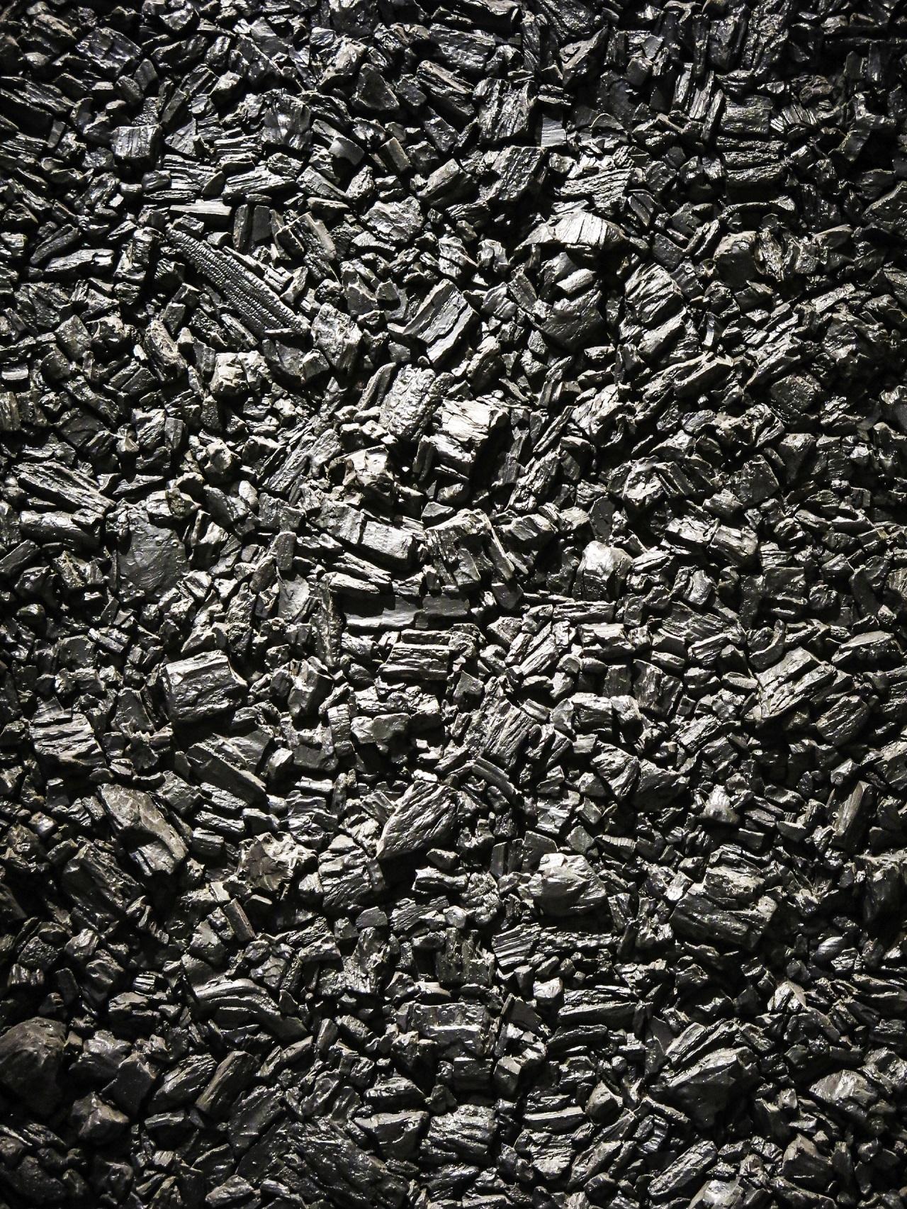 Trg premoga bo do leta 2023 ostal stabilen