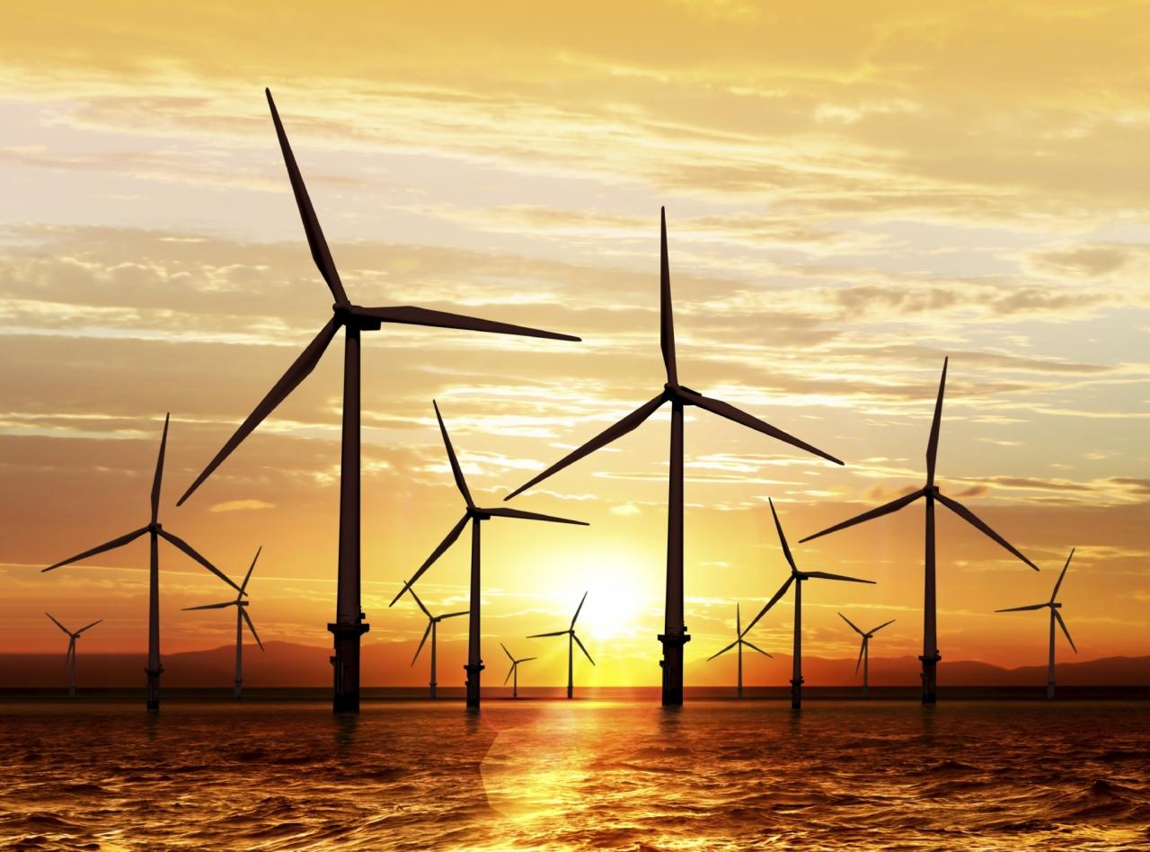 Vetrne elektrarne na morju spreminjajo morski ekosistem